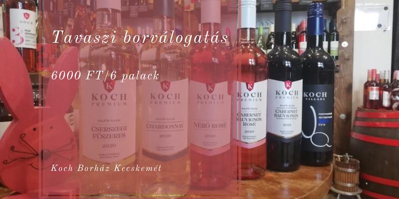 Koch Borászat